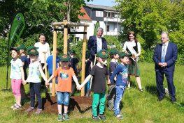 Um eine neu gepflanzte Eiche stehen Kinder im Kreis und halten sich an den Händen.